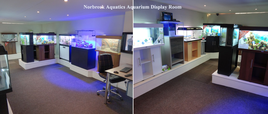 Aquarium Display Room