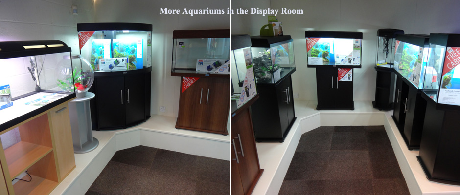 More Aquariums