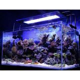 LED-Aquarium Lights
